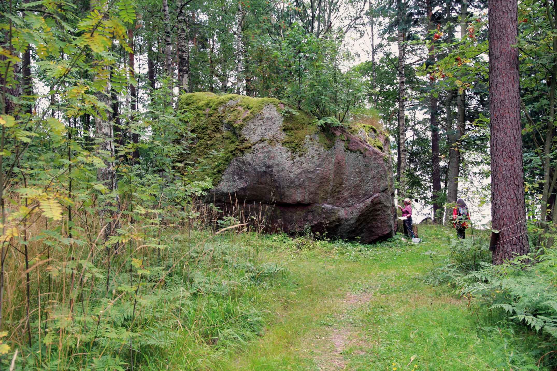 Vartiosaari - Siirtolohkare Vartiosaaressa. Kuva © Jan Strang 19.8.2012.