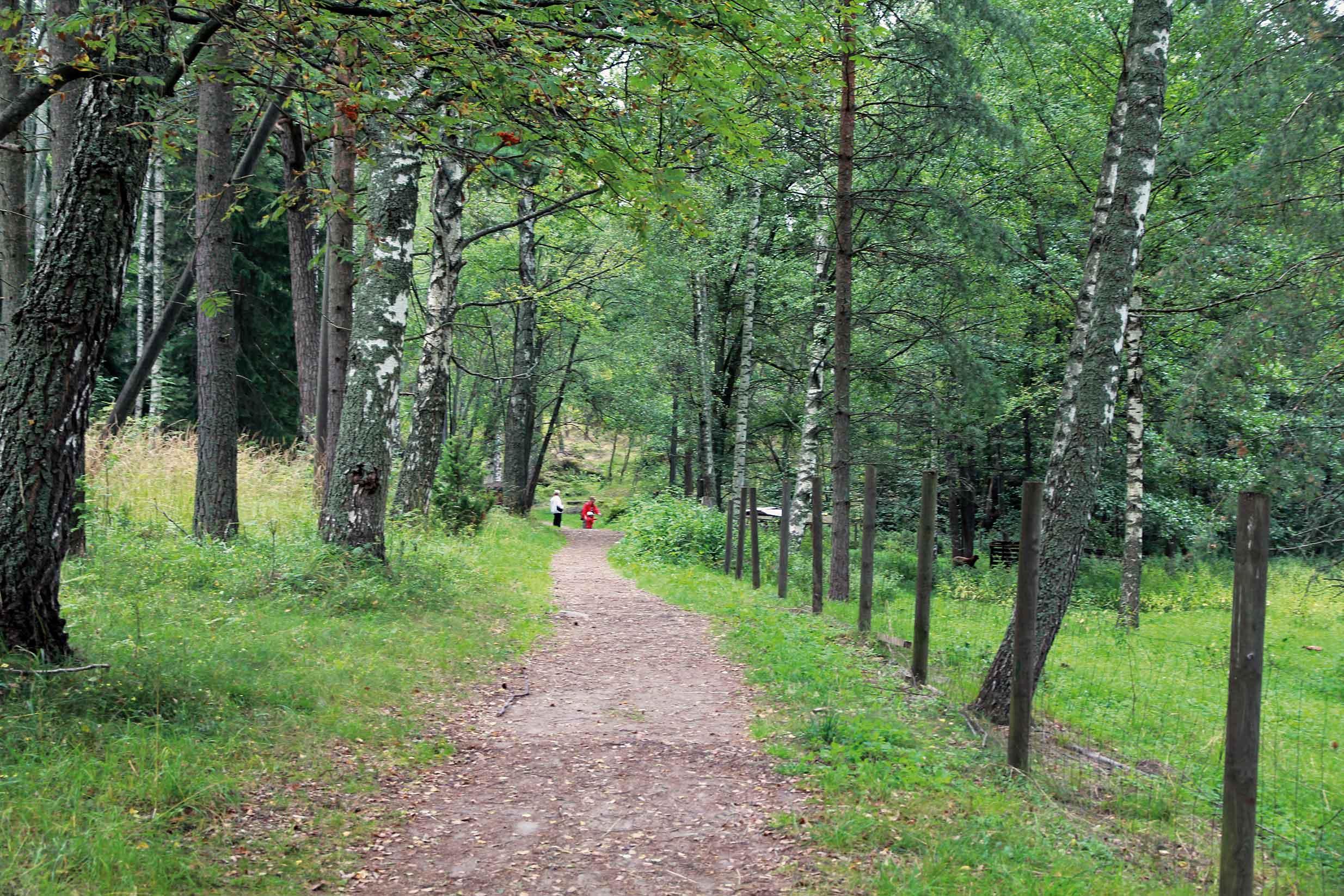 - Vartiosaari - Vartiosaaren päätie. Kuva © Jan Strang  19.8.2012.